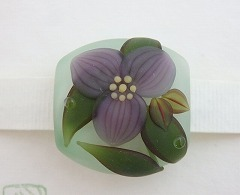53紫露草.jpg