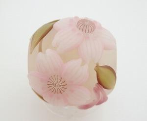 3糸桜-1.jpg